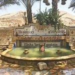 Bilde fra Israel Reiseleiter Ushi Engel - Day Tours