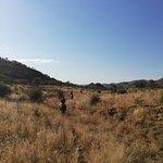 Foto de Equitrails Namibia