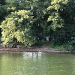 Bilde fra Hiawatha Paddlewheel Riverboat