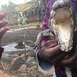 صورة فوتوغرافية لـ Nairobi Mamba Village