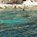 La Sirena Diving Center ภาพถ่าย