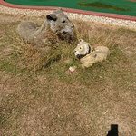 Foto de Jungle Journey Adventure Golf
