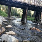 Bilde fra Rio Grande Trail