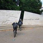 Foto di Animals in War Memorial