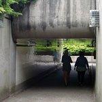 Tunnel under the highway.