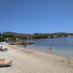 Photo of Port de Pollenca Beach