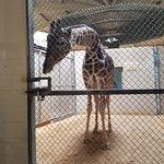 Photo de The Maryland Zoo