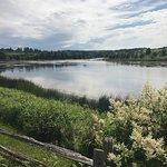 Billede af Prince Edward Island Preserve Company