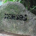 Foto de Xenses Park