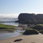 Photo of Praia Brava
