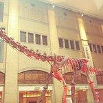 Foto de Museu Real de Ontário