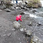 Foto de Saltos del Petrohue