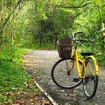 Our bike - Sri Nahkhon Khuen Khan Park & Botanical Garden
