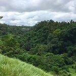 Photo of Campuhan Ridge Walk
