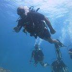Life is good underwater