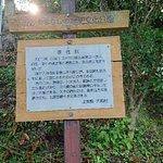 Фотография Keitokuin