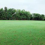 Cricket /Football Ground