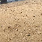 Foto de Naminoue Beach