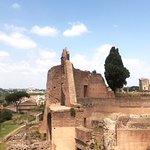 Roman Forum - Palatino