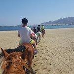 Фотография Naxos Horse Riding Club