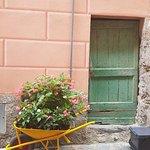 Foto Ristorante Via Venti
