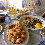 Sardines and Fresh Calamari