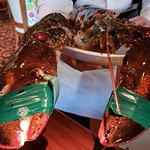 Meet & greet with 8lbs of Jumbo Lobster goodness!