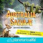 """¡No te la pierdas en el Domo IMAX! Película """"Australia Salvaje"""" del 29 de junio al 1 de noviembr"""