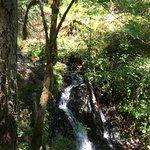 Moran State Park의 사진