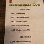 Billede af Krokodille Zoo