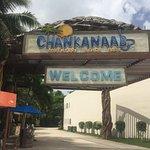 Chankanaab Beach Adventure Park resmi