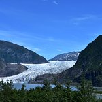 Mendenhall glacier from the forest overlook