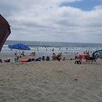Moonlight State Beachの写真