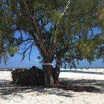 Zdjęcie Playa Paraiso