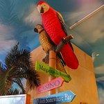 Foto de Margaritaville Atlantic City