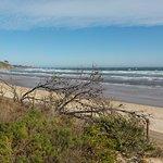 Frankston Beach의 사진