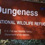 Φωτογραφία: Dungeness National Wildlife Refuge