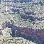 Photo of Papillon Grand Canyon Helicopters