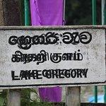 Bilde fra Gregory Lake