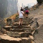 Foto van Mist Trail