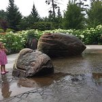 Coastal Maine Botanical Gardens의 사진