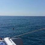 Catamaranes Sensation ภาพถ่าย