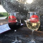 draft wine in the treehouse bar