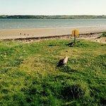 The beautiful beach at Pilmore Strand