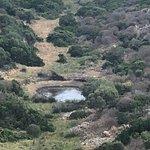 Foto van Parco Nazionale Asinara
