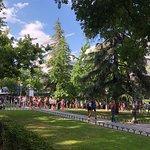 Prado Gardens with Line