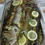 Enjoy fresh fish!
