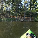 Billede af Bear Head Lake State Park