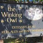 The Winking Owlの写真