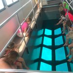 Glass Bottom Boat - viewing area